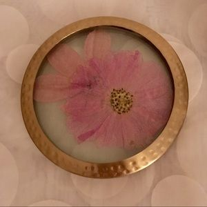 Anthropologie Rosy Rings large Candle